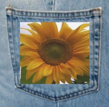 denimpocketsunflowerph1